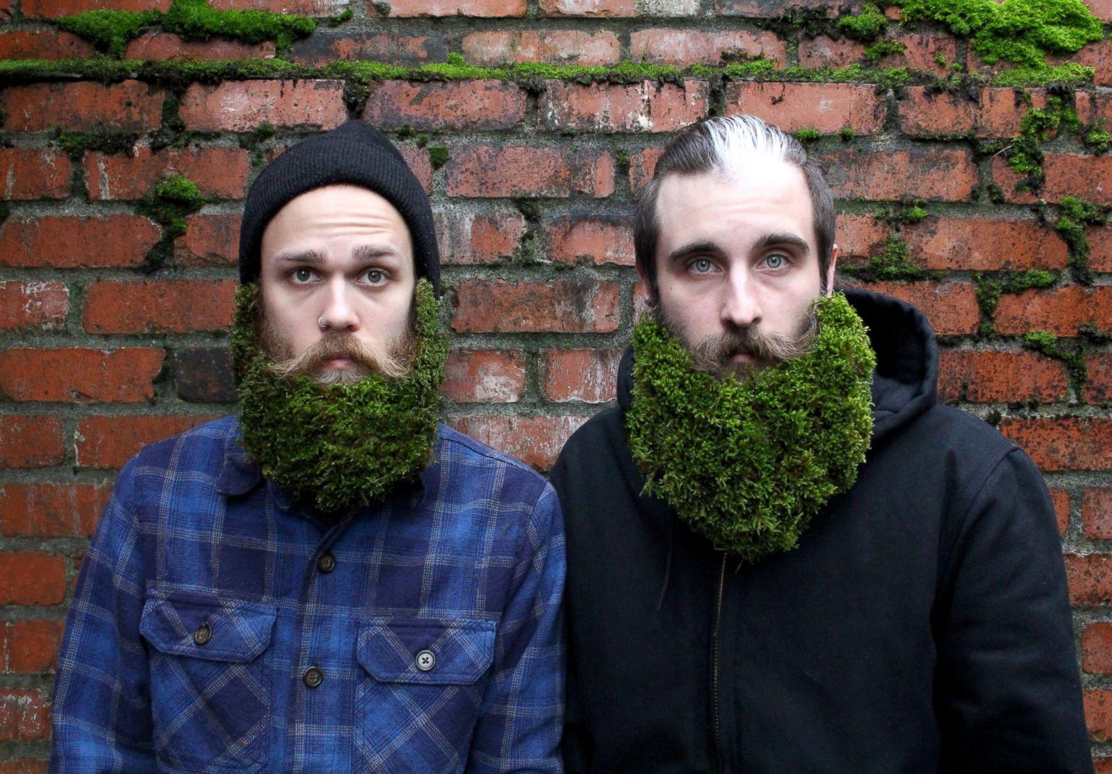 extreme beard grooming photos image 2 abc news. Black Bedroom Furniture Sets. Home Design Ideas