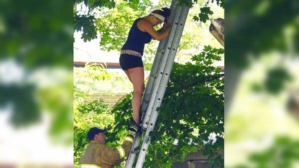 ap tara dennis stuck tree jc 140616 16x9 608 Woman Climbs Tree to Rescue Cat, Gets Stuck Herself