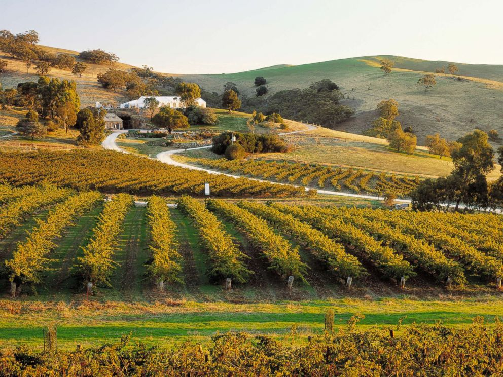 PHOTO: A scenic view of a winery in Barossa Valley, South Australia, is captured in this undated photo.
