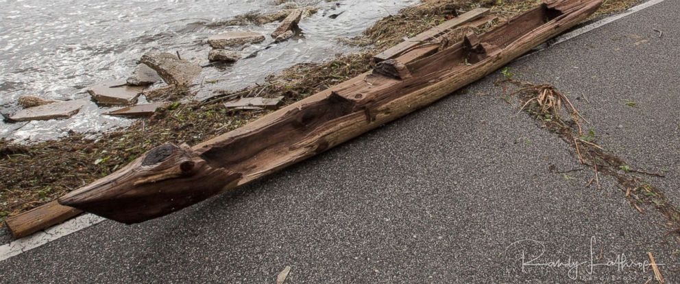 PHOTO: Randy Lathrop of Cocoa, Fla., discovered the historic dugout canoe, Sept. 11, 2017, after Irma struck the coast.
