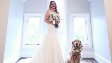 'PHOTO:' from the web at 'http://a.abcnews.com/images/Lifestyle/dog-flower-girl5-ht-ml-171211_16x9t_384.jpg'