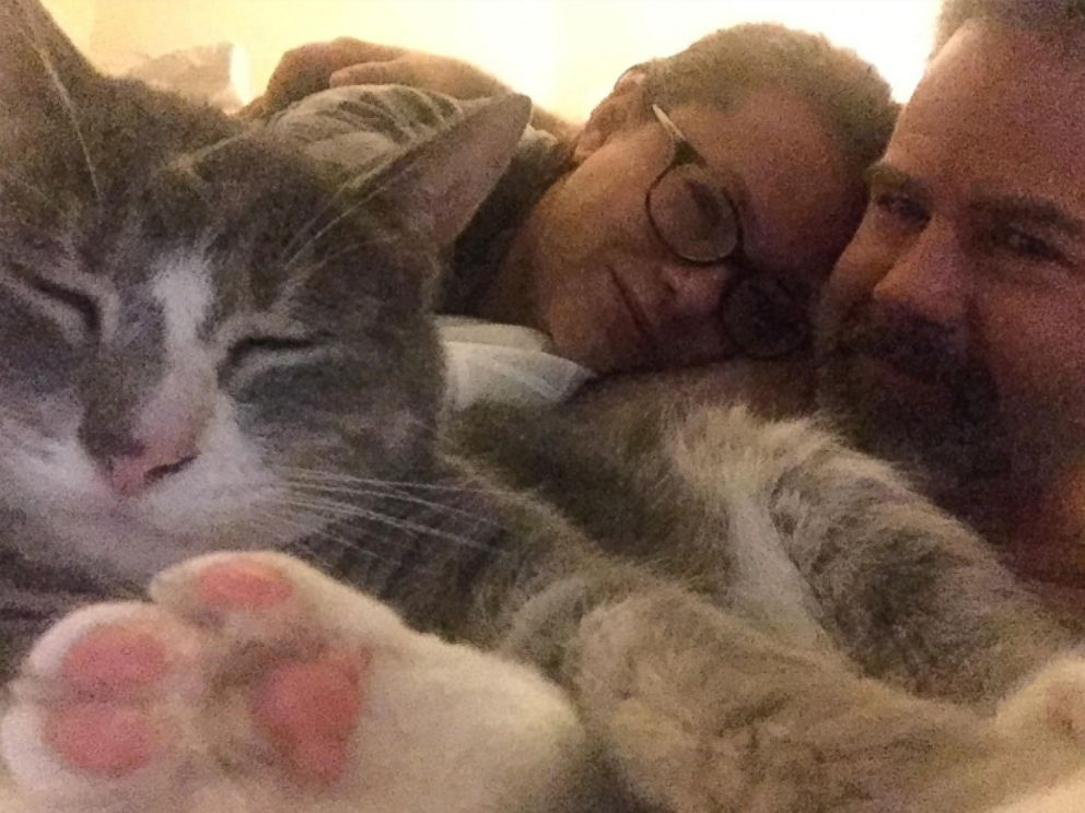PHOTO: Mary Irwins jerk cat, Babou, has been found.