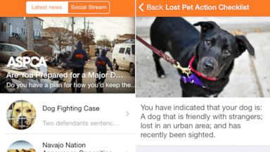 PHOTO: The American Society for the Prevention of Cruelty to Animals has launched their first mobile application intended to help pet owners reunite with lost pets and help make decisions for their care in case of natural disasters.