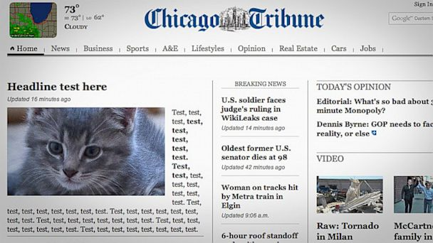 ht chicago tribune cat ll 130801 16x9 608 Chicago Tribune Website Error Puts Cat in the Spotlight