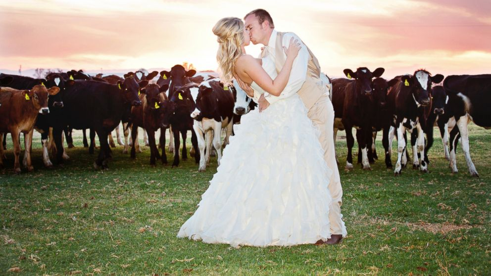 """PHOTO: Kelly Clarksons music video for Tie It Up"""" featured brides and grooms taking vows at a dairy farm, reflecting a trend among couples."""