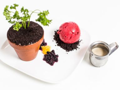 PHOTO: The spring-inspired Harvest dessert from New York Citys Spot Dessert Bar.
