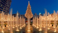 Lesser Known Christmas Trees to Visit this Year