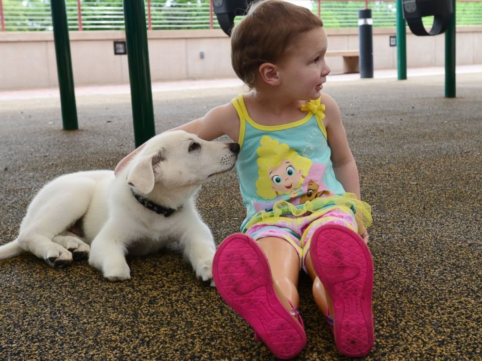 PHOTO: Sapphyre Johnson, 3, meets her new puppy Lt. Dan at the Shriners Hospital for Children in Greenville, S.C. on April 20, 2015.