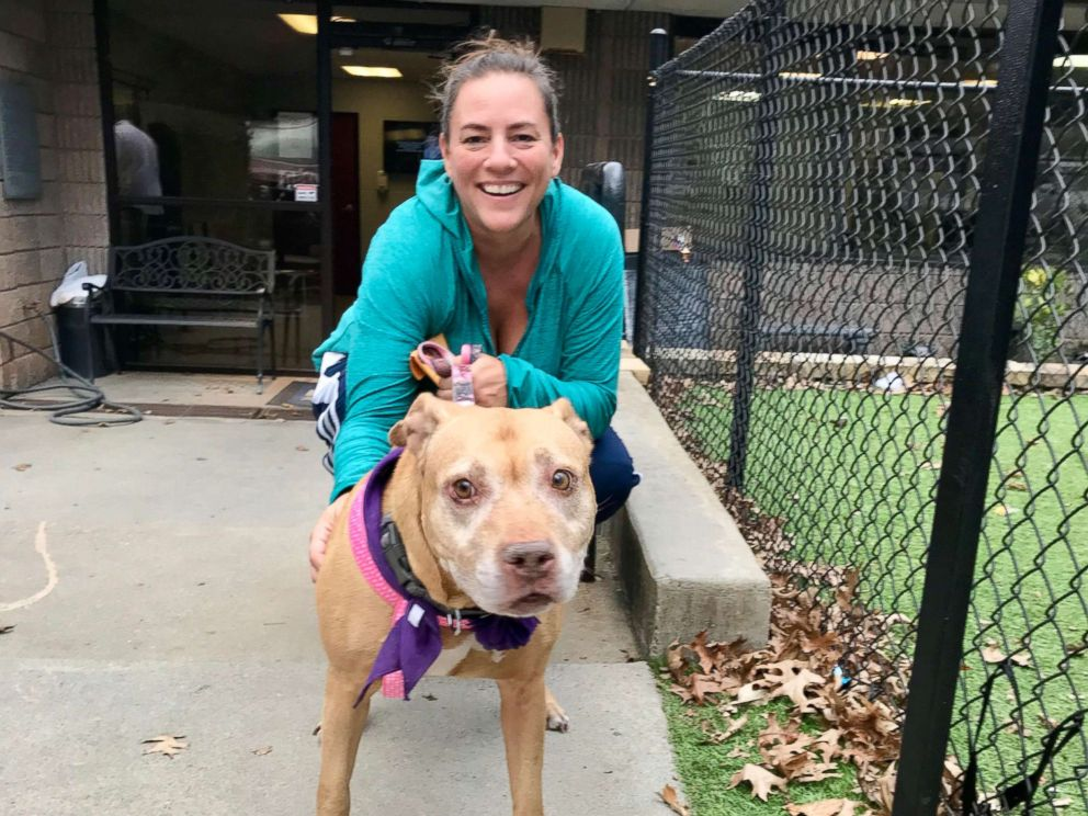 PHOTO: Missy the shelter dog is all smiles in the car on the way home with her foster mom, Heather Koth.