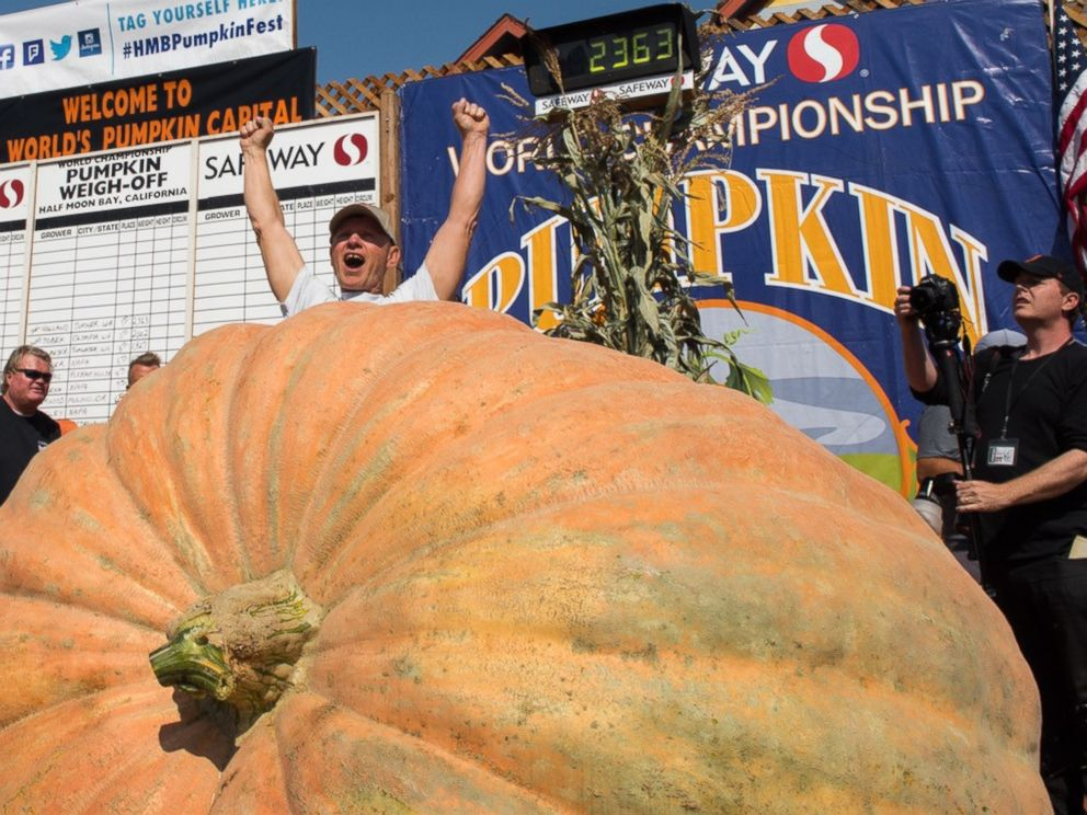 PHOTO: Joel Holland won the Safeway World Championship Pumpkin Weigh-off in Half Moon Bay, Calif. with a 2,363-pound pumpkin.