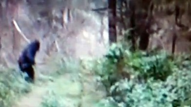 "PHOTO: In a video posted to YouTube by HowTo101Channel, a suspected ""Bigfoot"" was seen running through the woods in Ohio."