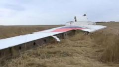 Malaysia Airlines Flight MH17 Shot Down: Timeline of What Happened