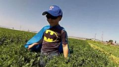 Batkid Is Back: The Brave Boy Who Battled Cancer