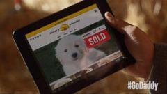 GoDaddy Pulls Super Bowl Puppy Ad After Backlash