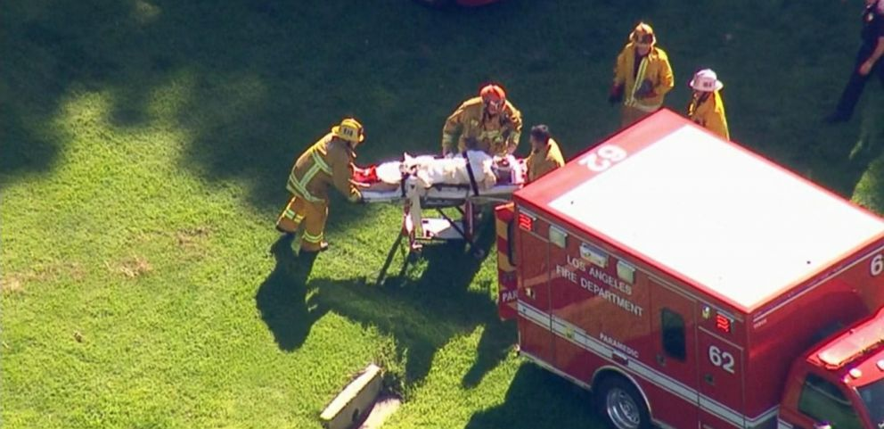 Harrison Ford Injured in California Small Plane Crash