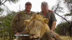 Minnesota Dentist Acknowledges Killing Beloved Lion Cecil