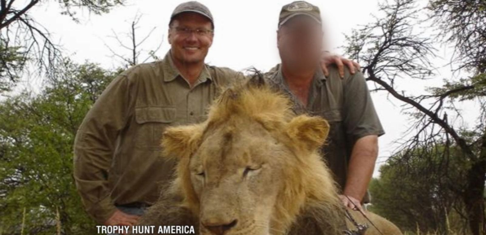 Minnesota Dentist Acknowledges Killing Beloved Lion Cecil