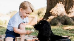 Prince George Celebrates Third Birthday