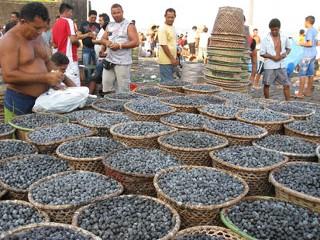 Doubts About Acai Berry Do Not Mute Market