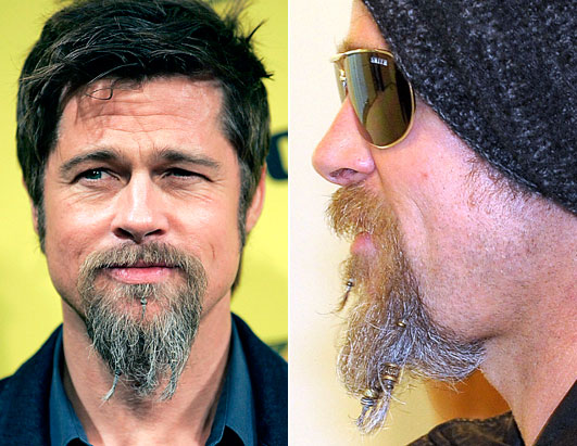 Are Beards and Moustaches Back? Brad Pitt