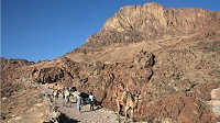 Photo: Mount Sinai