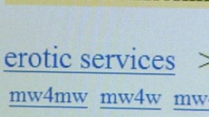 Goodbye Erotic Services