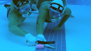 Photo: Underwater hockey practice at the University of Florida