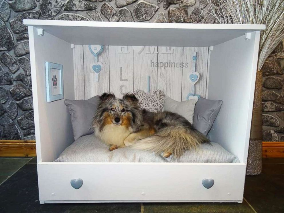 PHOTO: Kaylee Robertson said she likes to provide pets with their own little safe haven that they can sleep happy in.