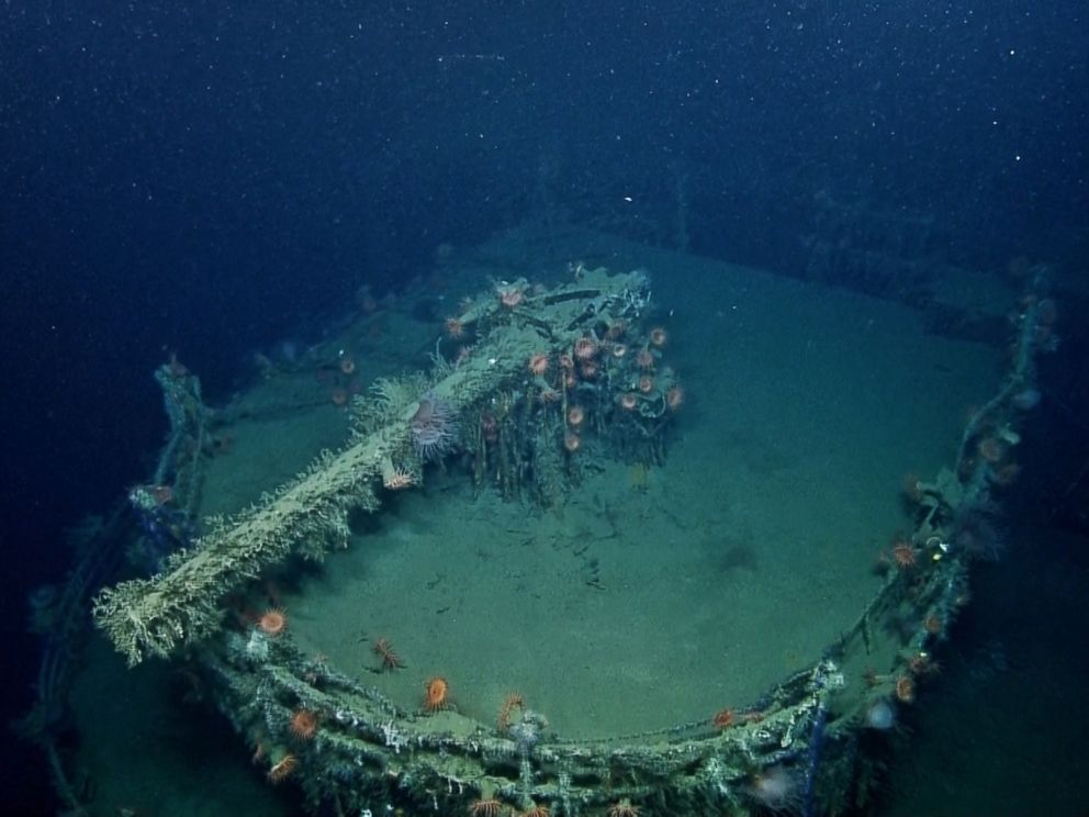 PHOTO: An anemone-covered gun on the remains of the SS Robert E. Lee is seen in this image made from the A Tale of Two Wrecks: U-166 and SS Robert E. Lee video.