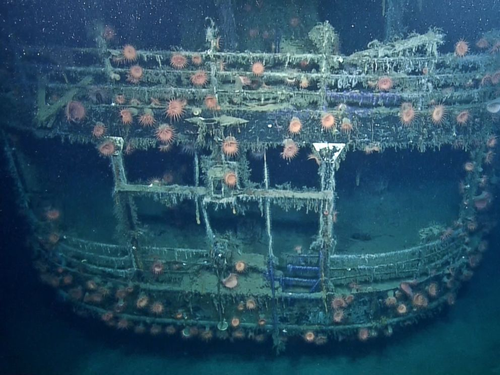 PHOTO: Anemones grow on the remains of the SS Robert E. Lee in this image made from the A Tale of Two Wrecks: U-166 and SS Robert E. Lee video.