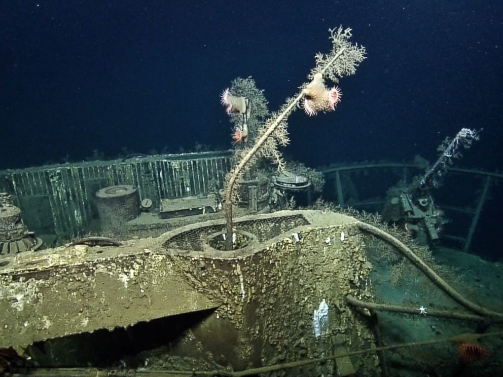 PHOTO: This image made from the A Tale of Two Wrecks: U-166 and SS Robert E. Lee video shows ocean life growing on top of the remains of the U-166 U-boat.