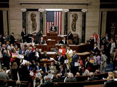 Watch:  House Democrats Stand Down After Chaotic Sit-In