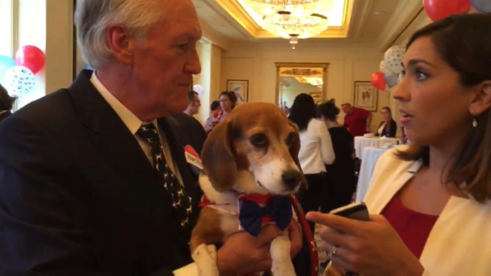 VIDEO: This Dog Wants Your Vote for President