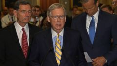 VIDEO: At least five Republican senators said they had opposed the procedural vote on the GOP health care plan.