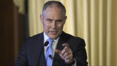 'VIDEO: The IG's letter in response to a request from Democrats on the committee was sent last week but posted by the Energy and Commerce committee democrats on twitter Tuesday.' from the web at 'http://a.abcnews.com/images/Politics/171214_wnn_pruitt_16x9_240.jpg'