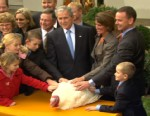 president george bush pardons a turkey on the day before thanksgiving