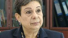 PHOTO: PLO Executive Committee member Hanan Ashrawi on This Week