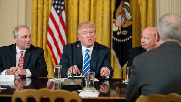 PHOTO: President Donald Trump, flanked by House Majority Whip Steve Scalise, left, and House Ways and Means Committee Chairman Rep. Kevin Brady, speaks during a meeting in the East Room of the White House, March 7, 2017, with the House Deputy Whip team.