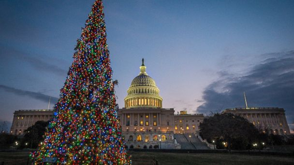 AP Capitol Christmas Tree DC 131216 16x9 608 Better Tidings for New Year