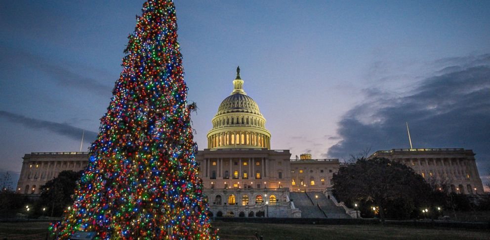 PHOTO: The U.S. Capitol Christmas tree is lit against the early morning sky Dec. 4, 2013 in Washington. The tree was officially lit Tuesday night to kick off the holiday season in the Nations Capital.