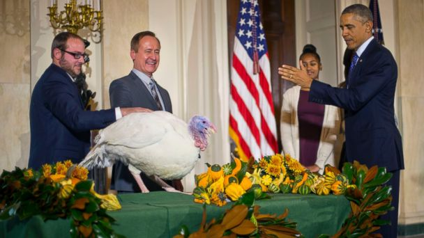 http://a.abcnews.com/images/Politics/AP_barack_obama_turkey_pardon_jt_141126_16x9_608.jpg