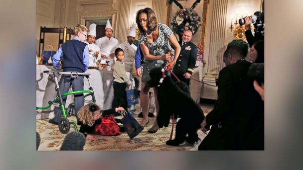 AP michelle obama dog knocks over girl sk v2 131204 16x9 608 Instant Index: Sunny the Dog Knocks Down Little Girl at the White House
