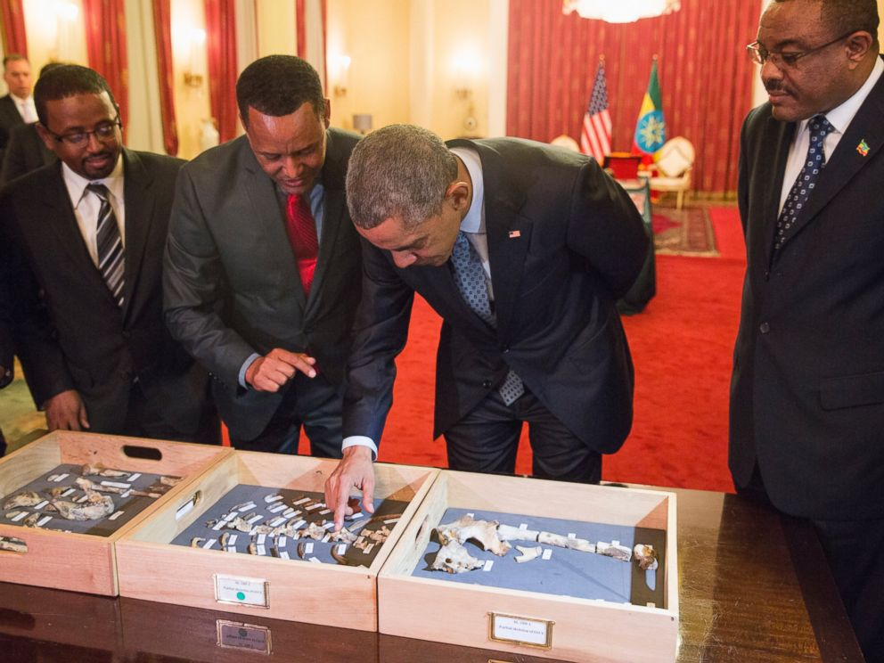 PHOTO: Ethiopian Prime Minister Hailemariam Desalegn, right, watches as President Barack Obama touches Lucy, part of several hundred pieces of bone representing 40 percent of a female Australopithecus afarensis.