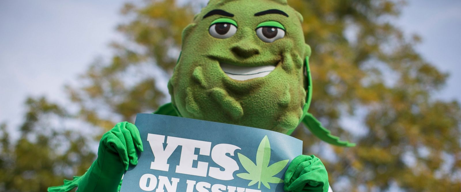 PHOTO: Buddie, the mascot for the pro-marijuana legalization group ResponsibleOhio, holds a sign during a promotional tour stop at Miami University, Oct. 23, 2015, in Oxford, Ohio.