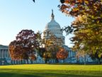 PHOTO: The US Capitol building is seen on a sunny autumn afternoon in Washington, Nov. 3, 2013.