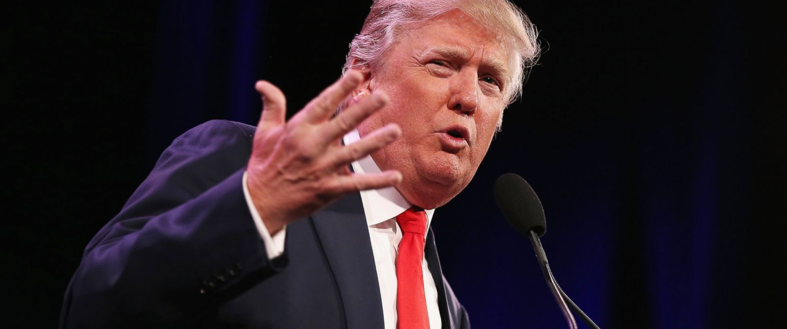 PHOTO: Donald Trump speaks to guests at the Iowa Freedom Summit on Jan. 24, 2015 in Des Moines, Iowa.