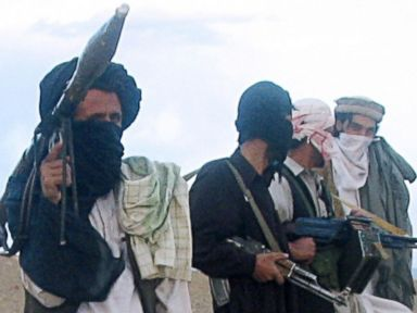 Taliban Are Not Terrorists, or So Says the White House