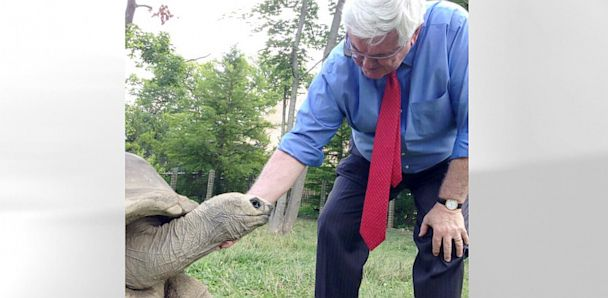 HT gingrich ml v4x3 33x16 608 Zoo Fanatic Newt Gingrich Dons Google Glass Amid Wildlife