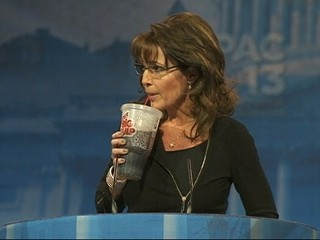 Palin: Background Checks Should Have Started With Obama