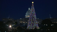 VIDEO: Capitol Hill Christmas Tree Lighting Ceremony